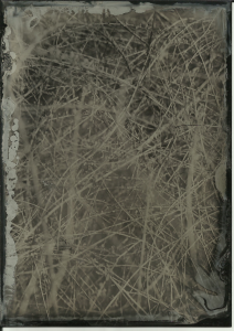 Bush, full sun, f11 4 seconds. 13x18cm black aluminum.