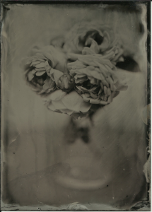 Roses from the bush in front of the house, in glass vase on grey table in front of white wall. Bohemia collodion (IIRC), f3, 2 seconds, aluminum plate, partly sunny.